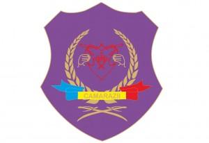 camarazii_logo