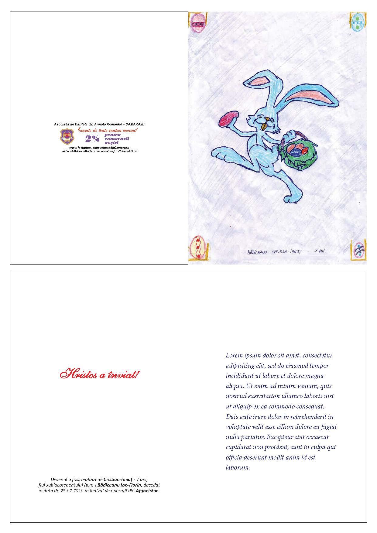 Cristian Ionuţ BĂDICEANU (3) - 7 ani